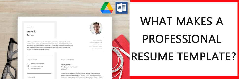 what makes a professional resume template