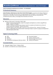 Database Administrative Executive Resume Example