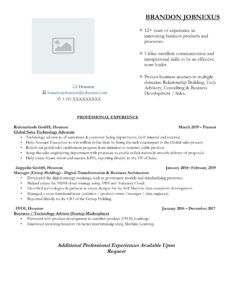 IT Sales Resume Example
